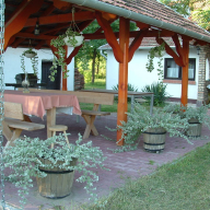 Hársfa Tanya