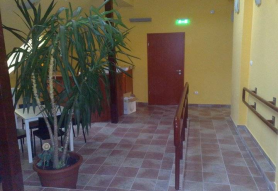 Vadgesztenye Youth Hostel