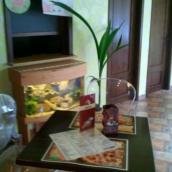 Don Fredo Pizza és Hamburger
