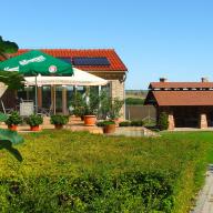 Pálmajor Pihenőpark és Rendezvényközpont