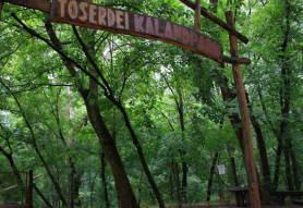 Tőserdei Kalandpark