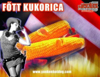 Yankee Amerikai Hot-dog Franchise11