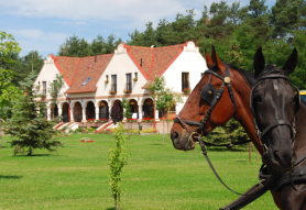 Erdőspuszta Club Hotel Arbo Vendégház Debrecen