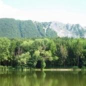 Szomjas Csuka