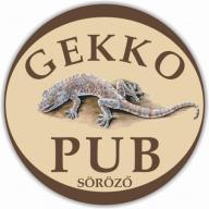 Gekko Pub és Étterem