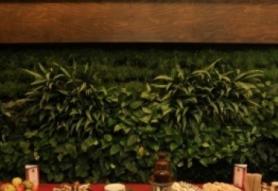 Café Paulus
